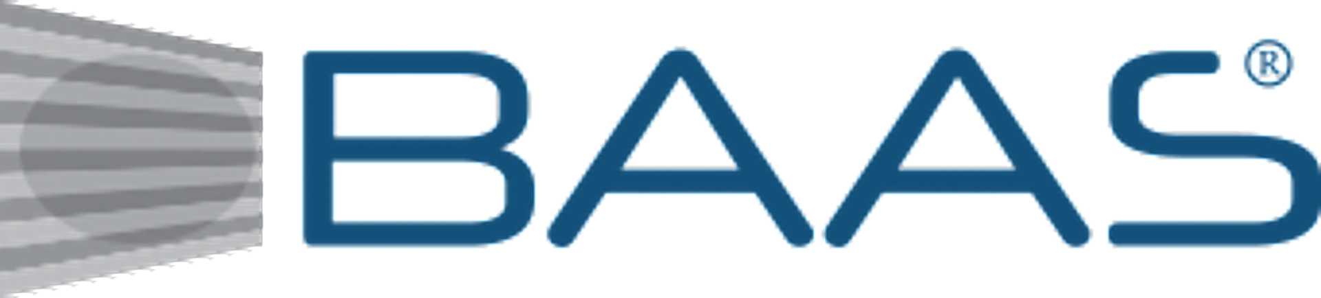 Logo, Baas Component AS